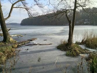 Wir haben schon einmal die Umgebung erkundet. Am Liepnitzsee sind dann viele Erinnerungen aus den Kinder- und Jugendtagen hochgekommen.
