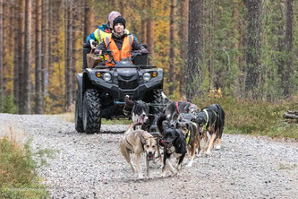 Schlittenhunderennen in Finnland