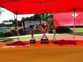 Trophies & medals at the Pickwick Final 2018