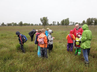 Exkursion ins Stapeler Moor im Sommer 2017 (Foto: Jens Rickels)