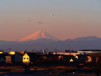 佐野から眺める富士山