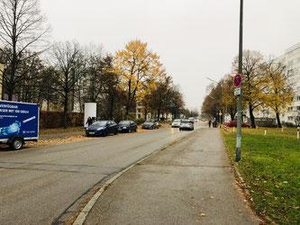 Der Lindenring - die Gehwege möchte die SPD für Radfahrer freigeben - Foto: SPD