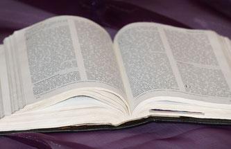 Die Bibel studieren am Seminarabend