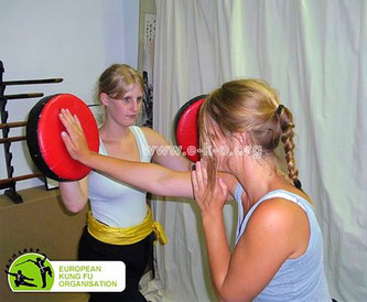 In unserer Kung Fu Schule in Köln lernen die Schüler alle Inhalte der chinesischen Kampfkunst: Formen, Partnerübungen etc.