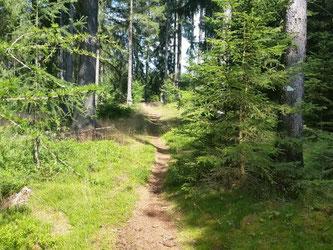 Trail zum Dylen