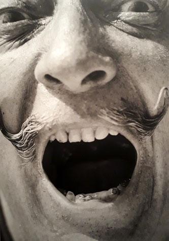Фотографии Сальвадора Дали работы Роберта Уайтекера