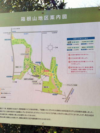 戸山公園は尾張徳川藩の下屋敷跡です。運動しながら歴史スポットを回ってみましょう。