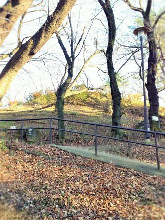 早稲田大学に隣接する箱根山には運動レベルに応じた登山コースがあるので、運動に自信のない方にもお勧めです。