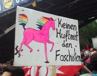 Leider weiss ich nicht, wer das Foto gemacht hat. Es entstand 2015 während einer Demo gegen Nazis. Wenn jemand den/die Urheberin kennt, bitte bei mir melden. - Text on photo means: Not a hoof's breadth to the fascists