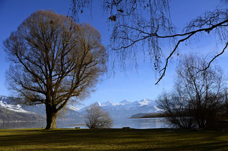 Copyright, AincaArt, Ainca Kira, Foto und Text, Writer, Photographer, Photography, Thun, Thunersee, Lake Thun, Bonstettenpark, Bonstetten