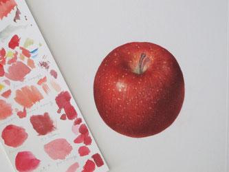 水彩画 ボタニカルアート リンゴ