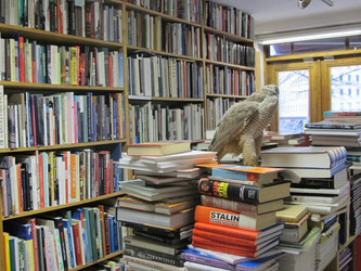 Booklover's paradise...