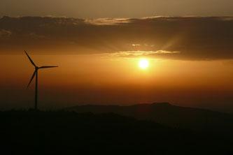 Windrad auf der Halde Hoppenbruch in Herten im Sonnenuntergang