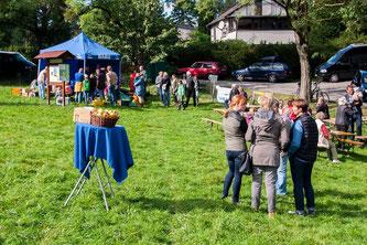 Blick über die Streuobstwiese beim Apfelfest. - Foto: Kathy Büscher