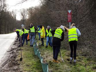 Mit Hilfe der Schüler stand der Amphibienzaun in Möllenbeck schneller als sonst. - Foto: Kathy Büscher