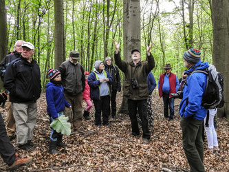 Die Exkursionsgruppe um Christian Weigel im Naturwald. - Foto: Kathy Büscher