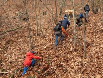 Anstatt der sonst üblichen Wege nahm die NAJU diesmal den direkten Weg nach oben zum Klippenturm. - Foto: Kathy Büscher