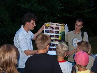 Die Kinder konnten an einer Übersicht die in Deutschland heimischen Fledermausarten entdecken. - Foto: Kathy Büscher