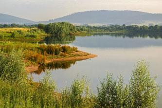 In unmittelbarer Nähe befindet sich das Naturschutzgebiet in Hohenrode. - Foto: Kathy Büscher