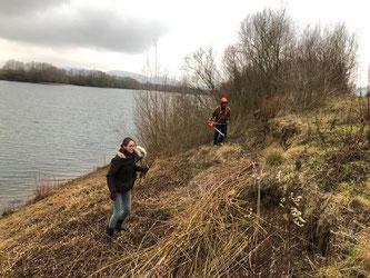 Die Uferbereiche werden freigestellt. - Foto: Dr. Nick Büscher