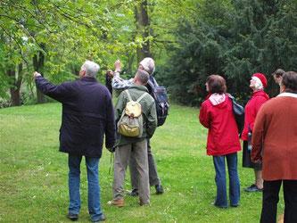 Die Vogelfreunde lauschen und versuchen den dazugehörgen Vogel zu entdecken. - Foto: Kathy Büscher