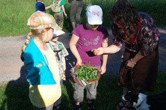 Britta Raabe, NAJU-Betreuerin, klärt über die gefundenen Pflanzen und Kräuter auf. - Foto: Dennis Dieckmann