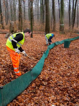 Auch am Waldkater wurde wieder ein Schutzzaun installiert. - Foto: Kathy Büscher
