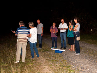 In der Auenlandschaft wurden Fledermäuse geortet. - Foto: Kathy Büscher