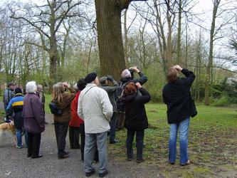 Vogelstimmenwanderung im Blumenwall April 2008. - Foto: Kathy Büscher