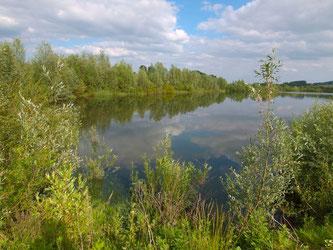 Der kleine, östliche Teich in der Auenlandschaft. - Foto: Kathy Büscher