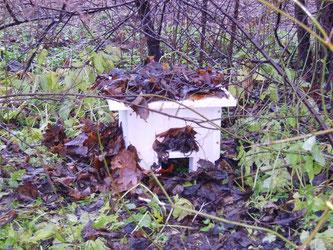 Katzensichere Igelburg als Versteckmöglichkeit im Garten. - Foto: Kathy Büscher