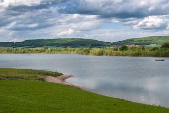 Uferbereich an den Hohenroder Kiesteichen. - Foto: Kathy Büscher