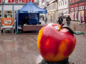 Der NABU-Stand auf dem Marktplatz in Rinteln. - Foto: Kathy Büscher