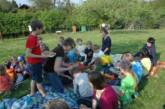 Allerlei Essbare Kräuter werden bei einem Picknick probiert. - Foto: Britta Raabe