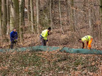 Auch am Waldkater werden wieder Amphibien gesammelt. - Foto: NABU