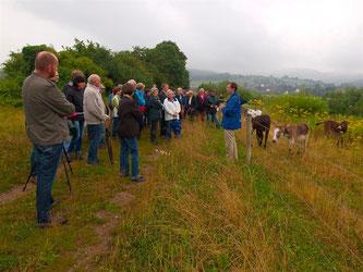 Vor der Weide am Rundweg wird das Beweidungsprojekt erläutert. - Foto: Kathy Büscher