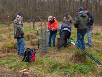 Auf der Erweiterungsfläche müssen die neuen Bäume eingezäunt werden. - Foto: Kathy Büscher