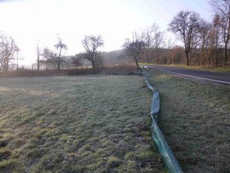 Amphibienzaun am Lufthofweg