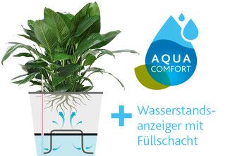Quelle: emsa - Querschnitt vom Bewässerungssystems