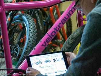 Fahrradfahren stimuliert das Immunsystem
