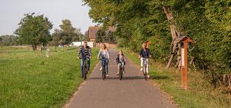 Radfahren in Saale-Unstrut - Elsterradweg —  Copyright: Saale-Unstrut-Tourismus e.V., Falko Matte