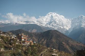 Über Natursteintreppen wandern Hauser-Reisende zum malerischen Nepal-Dorf Ghandrung auf 2.000 Metern. ©Hauser Exkursionen/Anskar Lenzen