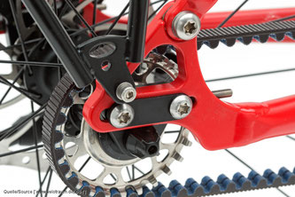 Riemenräder werden in erster Linie mit einer Zentralgetriebeschaltung von Pinion oder Nabenschaltungen gefahren