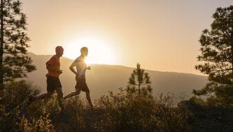 Die Insel auf unzähligen Traumstrecken entdecken ©Gran Canaria, Tri, Bike & Run