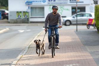 Tiere dürfen auf dem Rad nicht mitgenommen werden