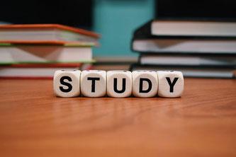 Ein Studium beginnen? Ja oder nein?  (Symbolbild; Foto: pixabay.com / Wokandapix)