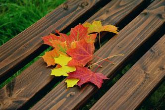(Symbolbild; Foto: pixabay.com /congerdesign)