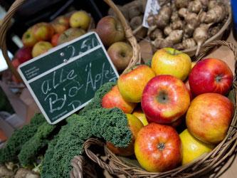 Bio-Äpfel werden auf der Grünen Woche präsentiert. Ökolandbau soll noch attraktiver werden. Foto: Jörg Carstensen/Archiv
