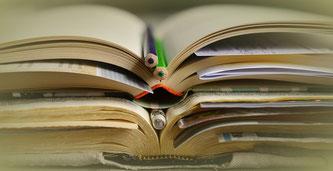 (Symbolbild; Foto: pixabay.com / congerdesign)