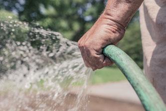 Tipps für die Gartenarbeit im Sommer (Symbolbild; pixabay.com / RyanMcGuire)
